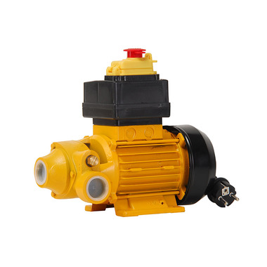 CDI-P25 220V Fuel Transfer Water Pump